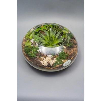 Flower Box nr 3