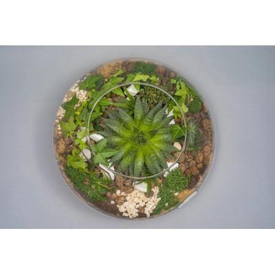 Flower Box nr 4