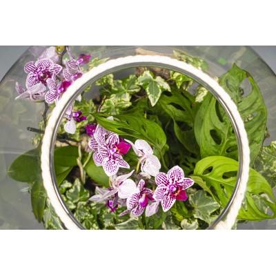 Flower box nr 7