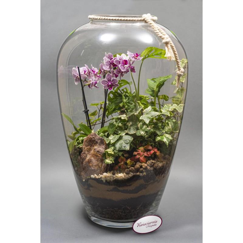 Bukiet 50 Róż Czerwonych